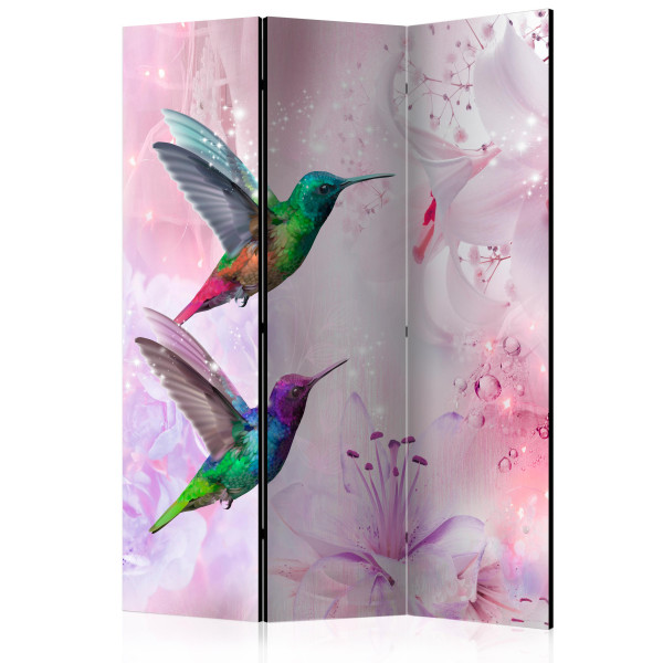 Paraván - Colourful Hummingbirds [Room Dividers]