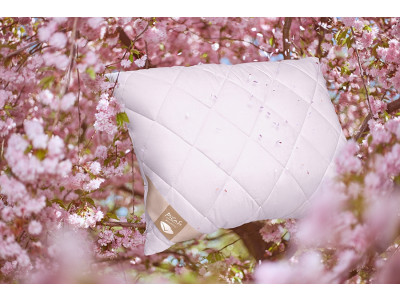 Picaso Luxusní polštář DREAMSUN 70x90 cm